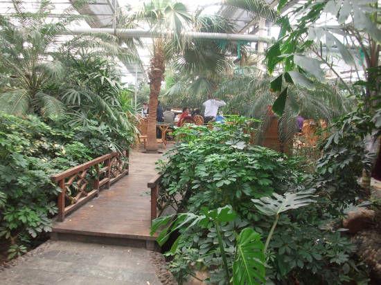 新疆伊犁霍城生态餐厅